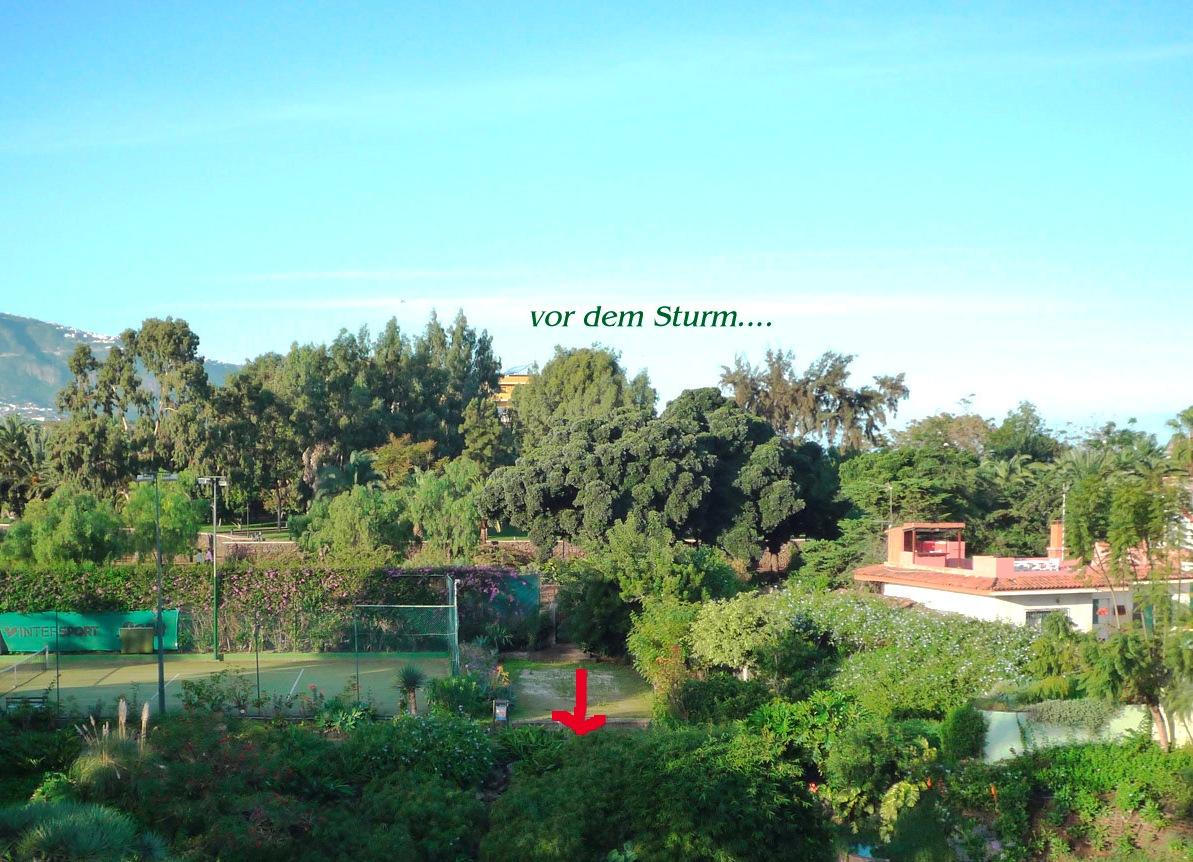Garten arbeiten tigaiga blog for Garten arbeiten