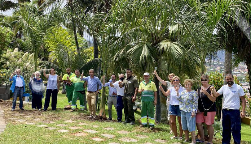 Neue Palmen im Hotel Garten!